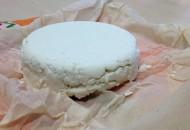 Taller de quesos en El Gurugú 4